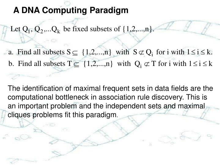 A DNA Computing Paradigm