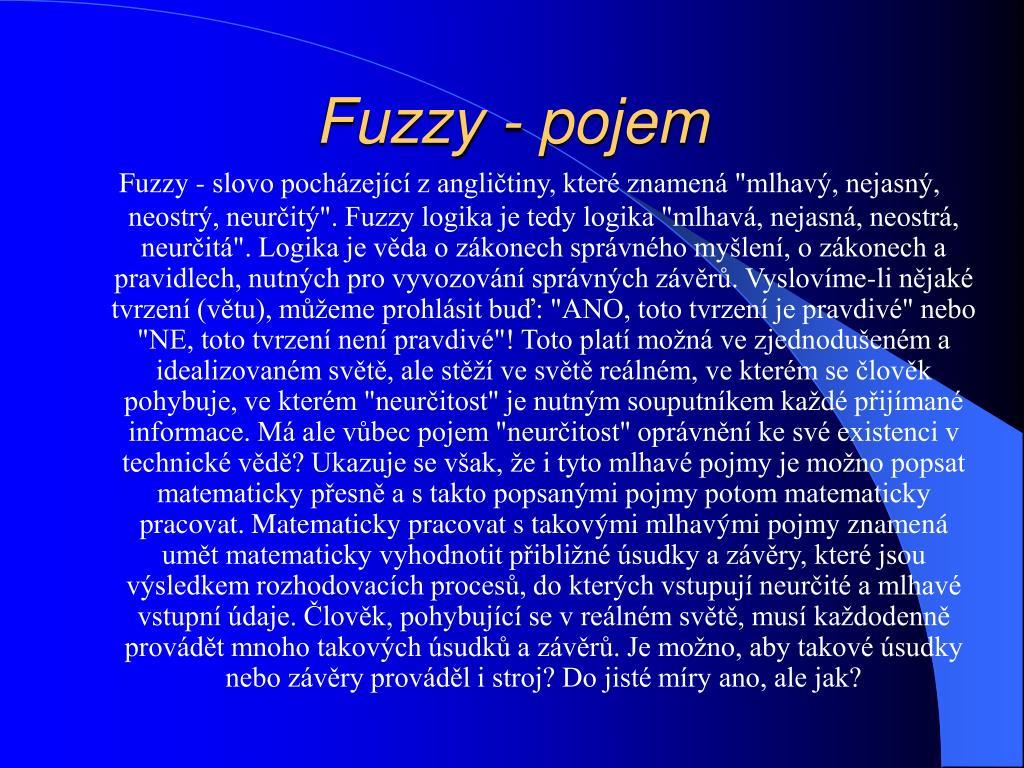 Fuzzy - pojem