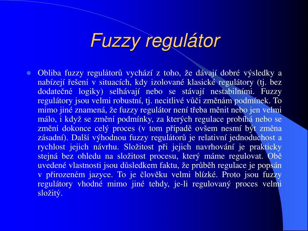 Fuzzy regulátor