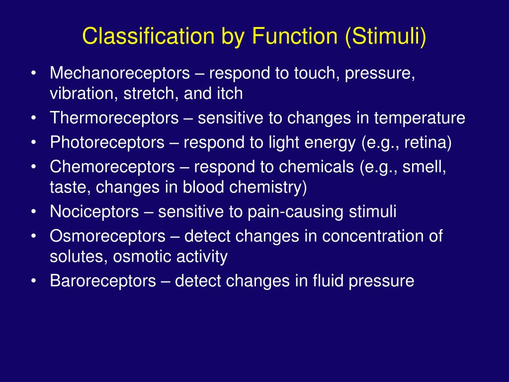 Classification by Function (Stimuli)