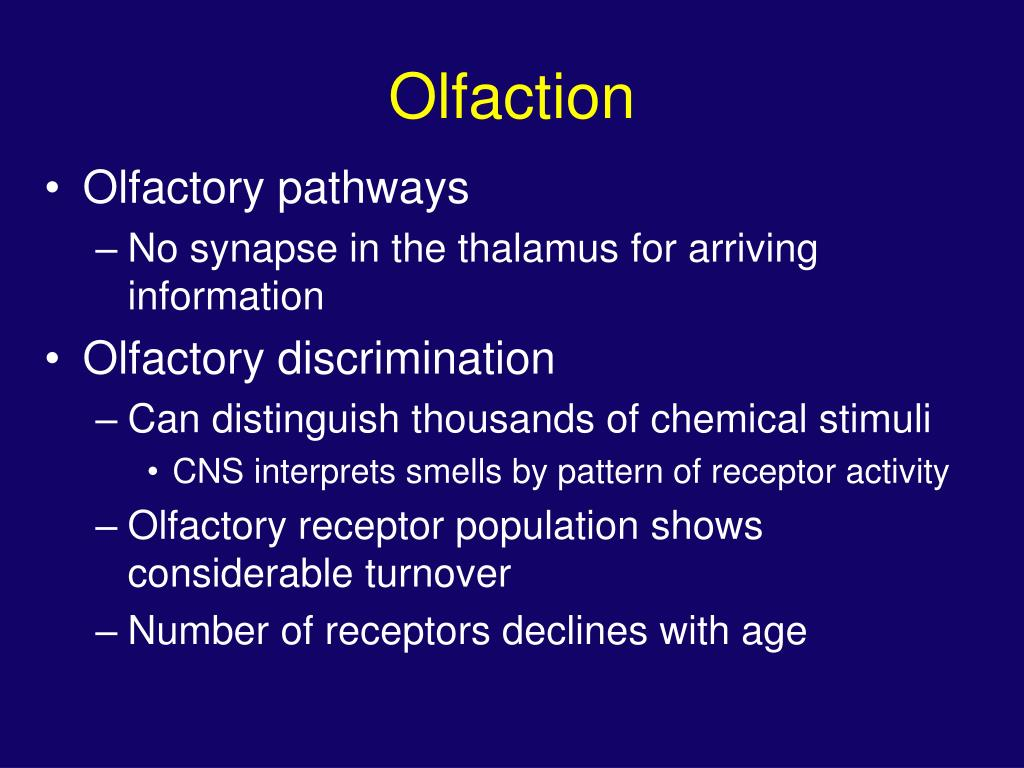Olfaction