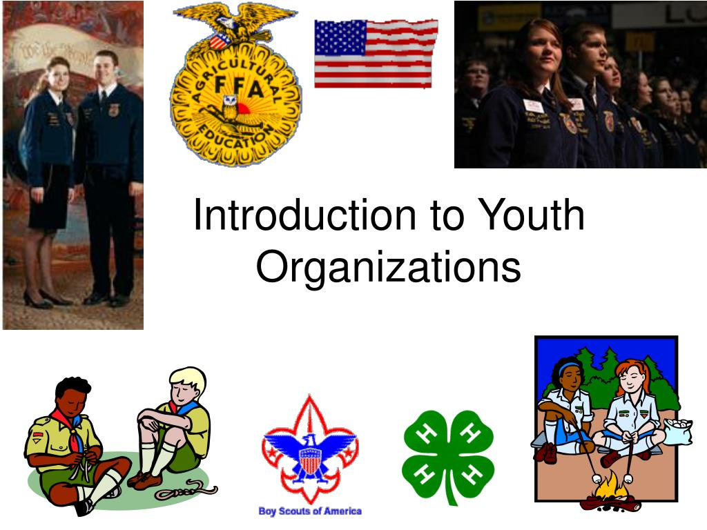 introduction to youth organizations l.