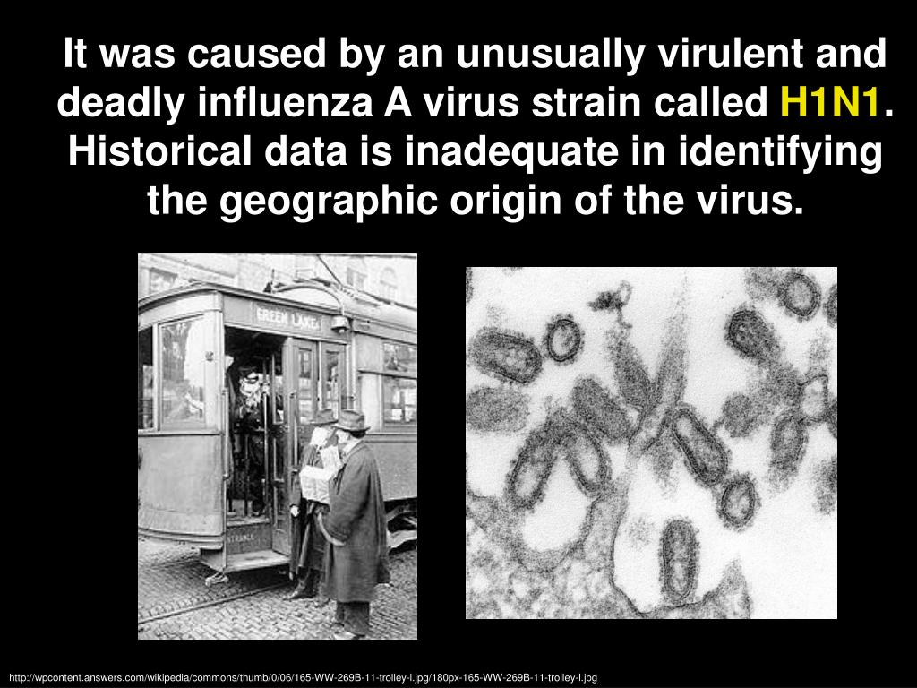 It was caused by an unusually virulent and deadly influenza A virus strain called