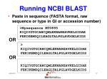 running ncbi blast12