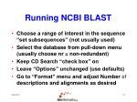 running ncbi blast13