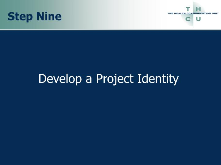 develop a project identity n.