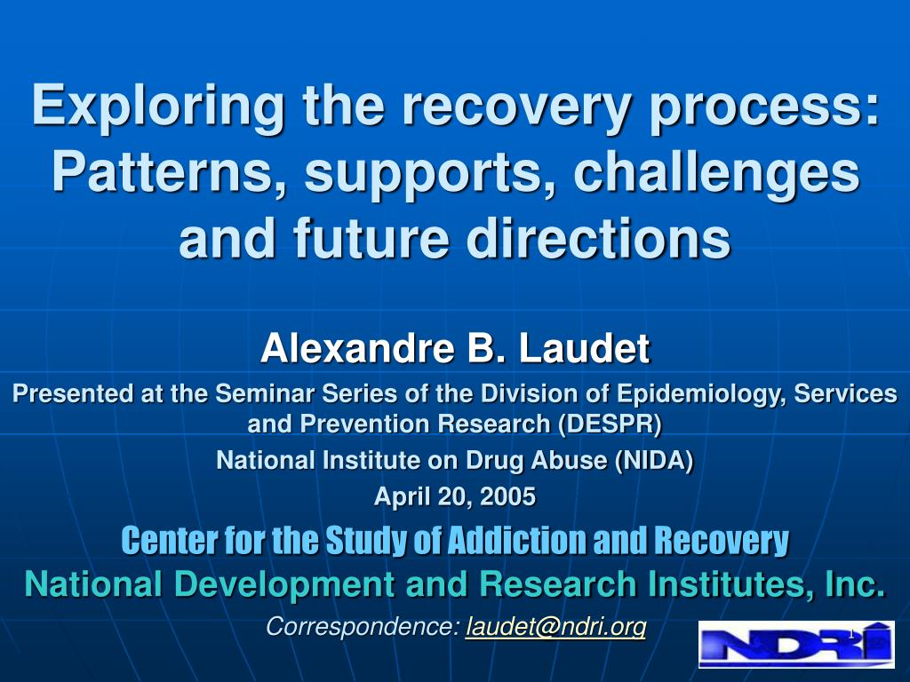 exploring the recovery process patterns supports challenges and future directions l.