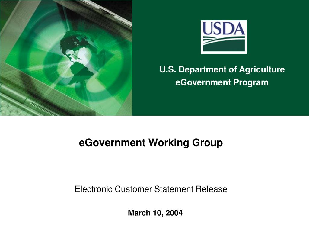 egovernment working group electronic customer statement release l.