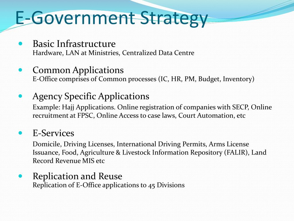 E-Government Strategy