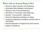 what will an annual report be