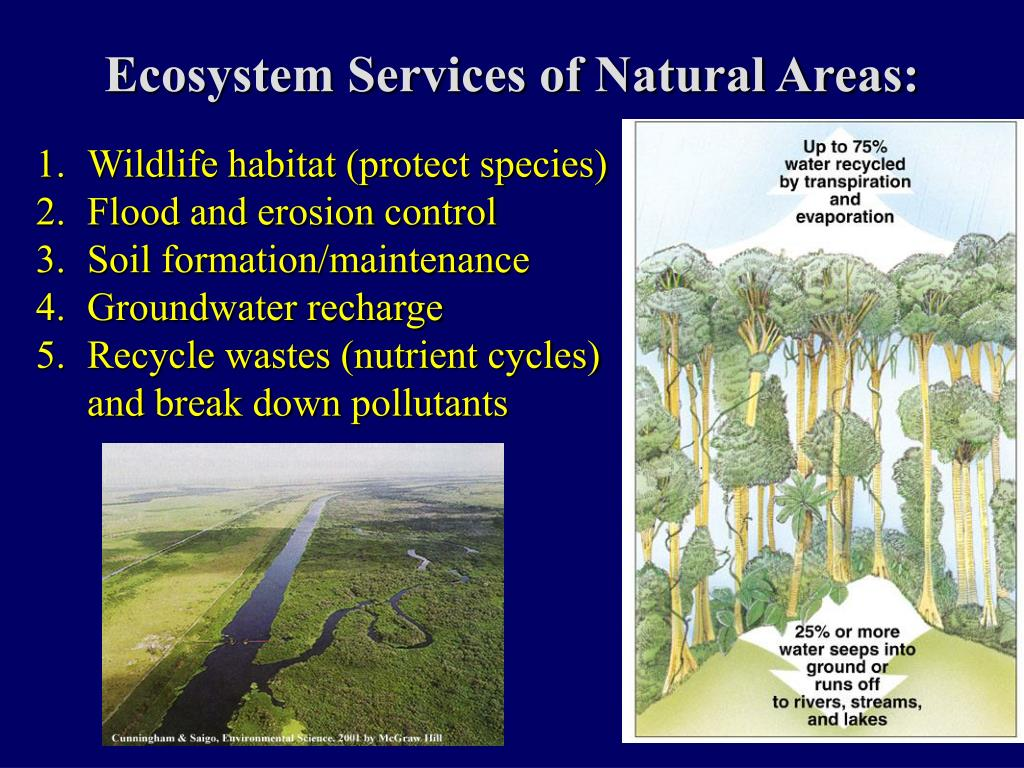 Ecosystem Services of Natural Areas: