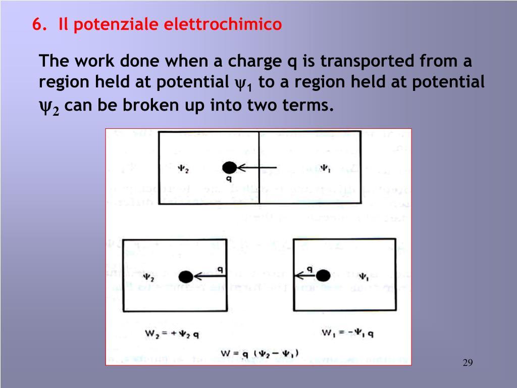 6.  Il potenziale elettrochimico