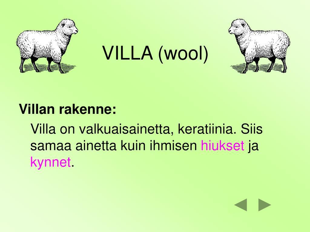 VILLA (wool)