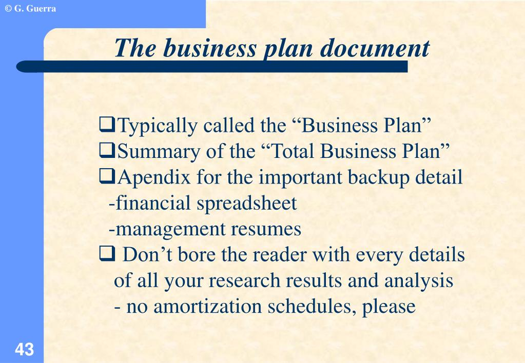 The business plan document