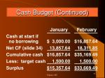 cash budget continued