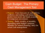 cash budget the primary cash management tool