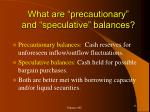 what are precautionary and speculative balances