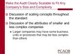 make the audit clearly scalable to fit any company s size and complexity