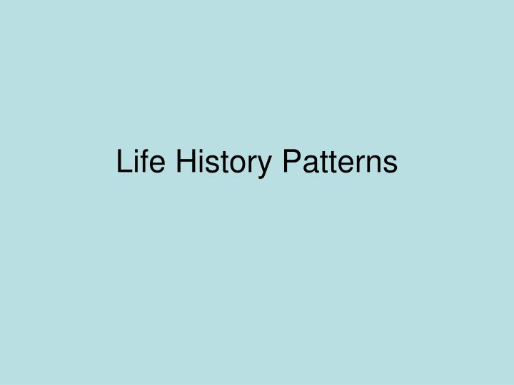 life history patterns n.