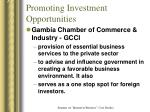 promoting investment opportunities
