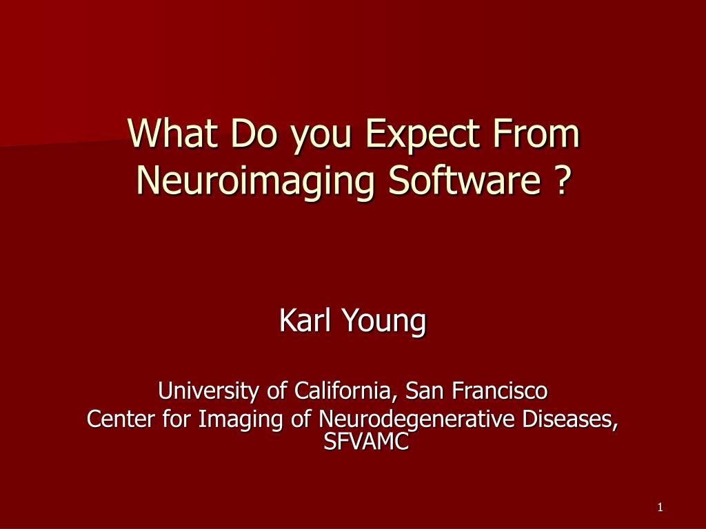 what do you expect from neuroimaging software l.