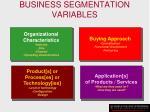 business segmentation variables