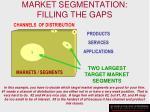 market segmentation filling the gaps