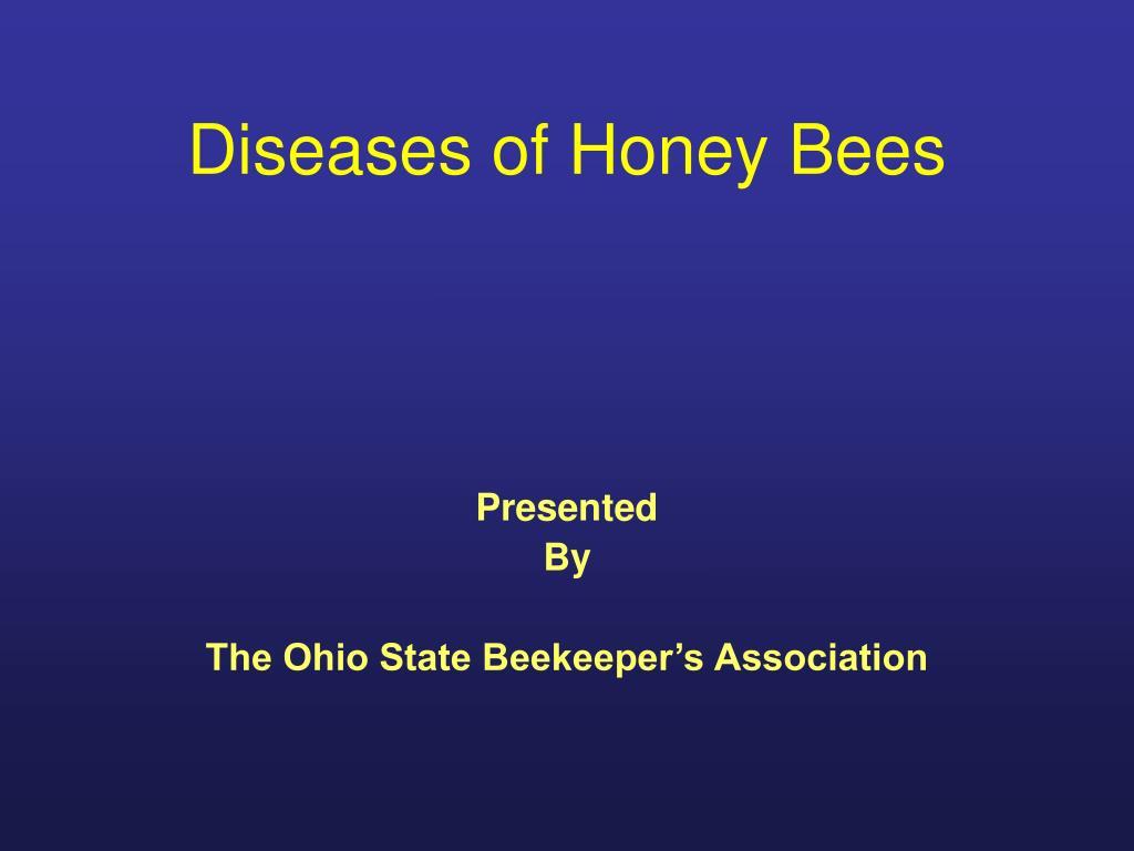 diseases of honey bees l.