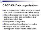 caqdas data organisation