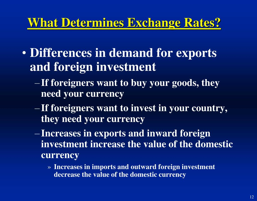 What Determines Exchange Rates?