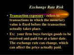 exchange rate risk44