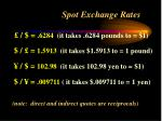 spot exchange rates