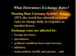 what determines exchange rates