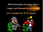 what determines exchange rates19