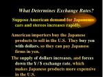 what determines exchange rates26