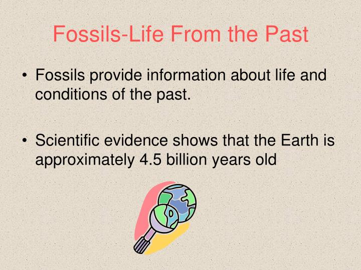 Fossils-Life From the Past