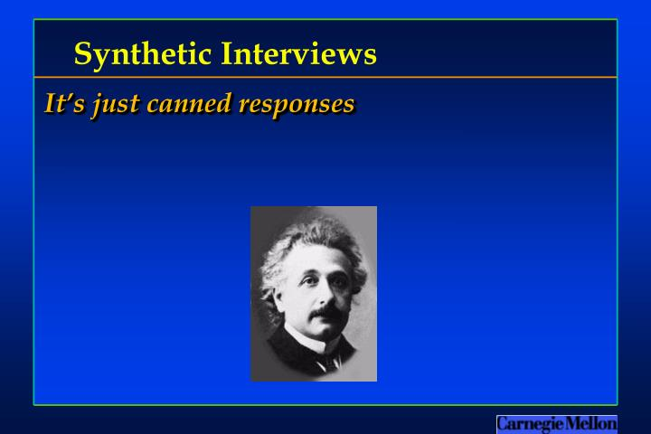Synthetic Interviews