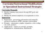 curricular instructional modifications or specialized instructional strategies19