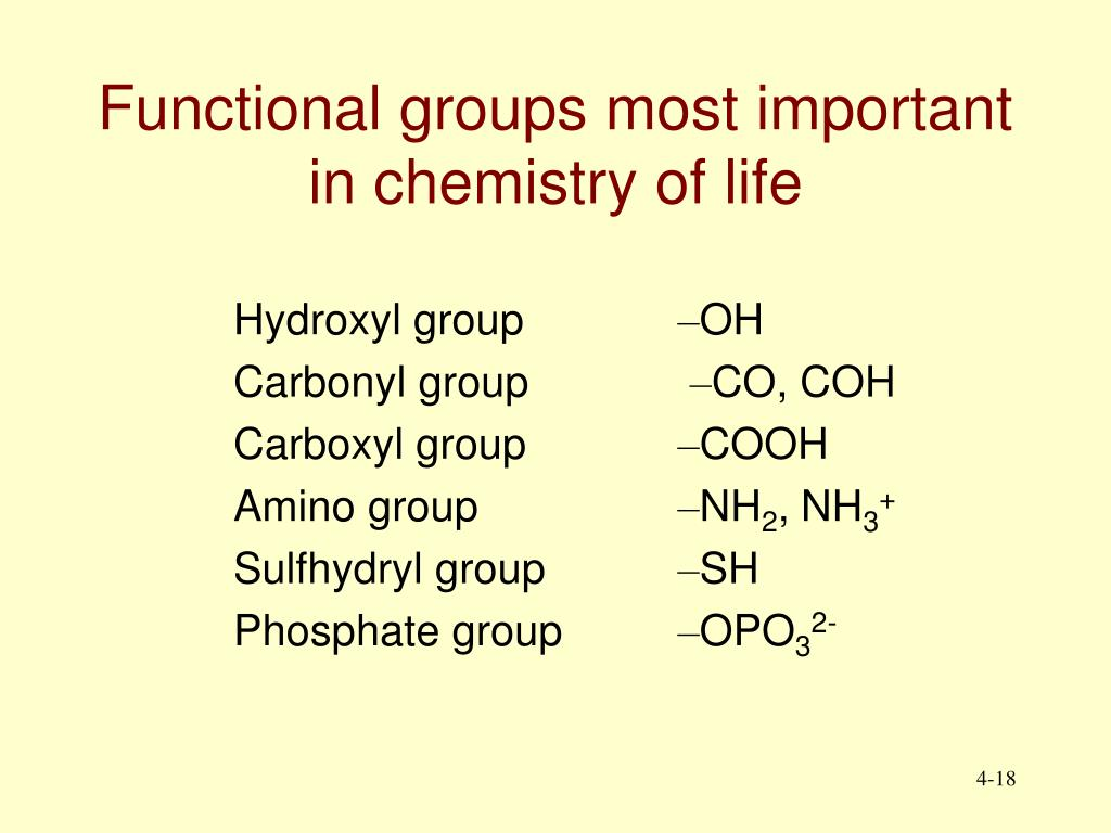 Functional groups most important in chemistry of life