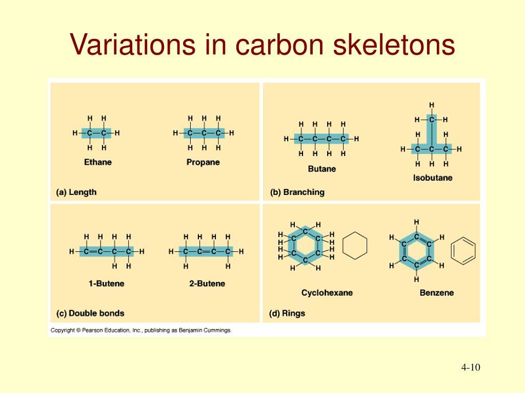 Variations in carbon skeletons