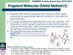 fragment molecular orbital method 1
