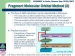 fragment molecular orbital method 2