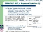 rism scf mo in aqueous solution 1