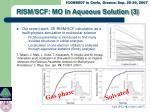 rism scf mo in aqueous solution 3