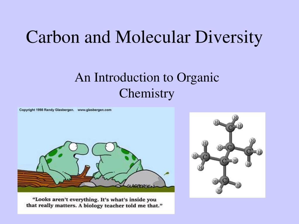 carbon and molecular diversity l.