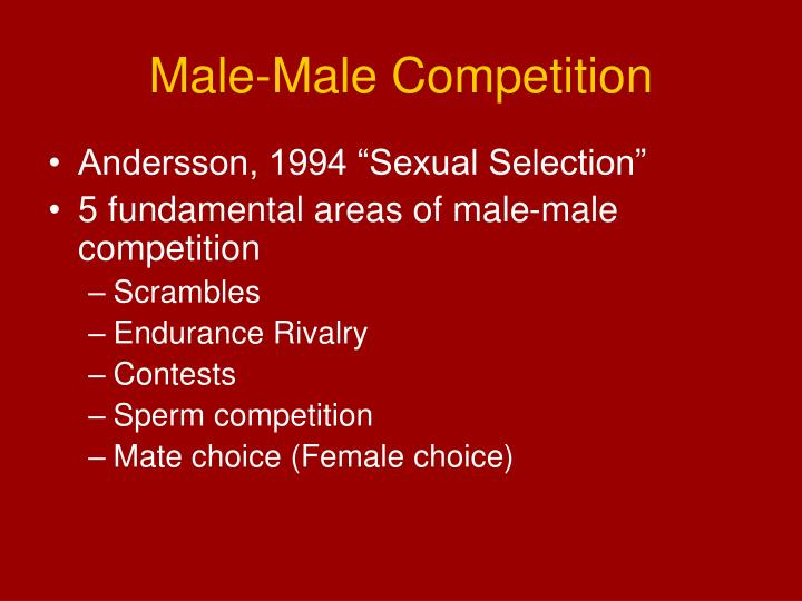Male male competition