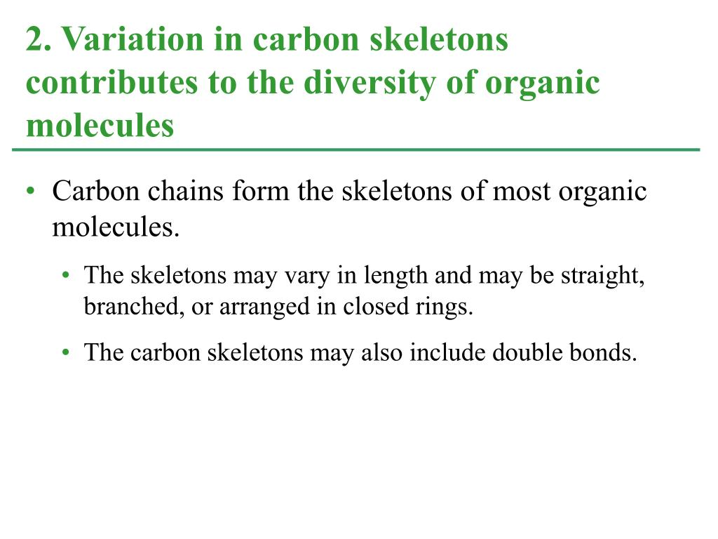 Carbon chains form the skeletons of most organic molecules.