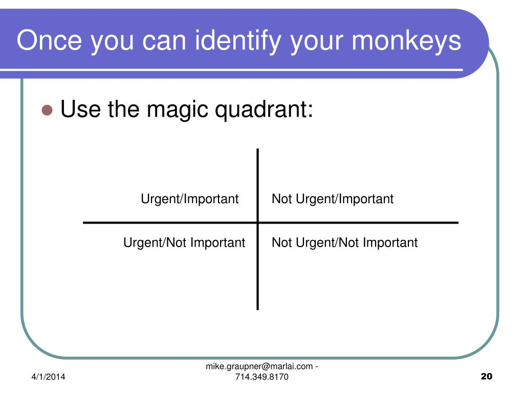 Once you can identify your monkeys