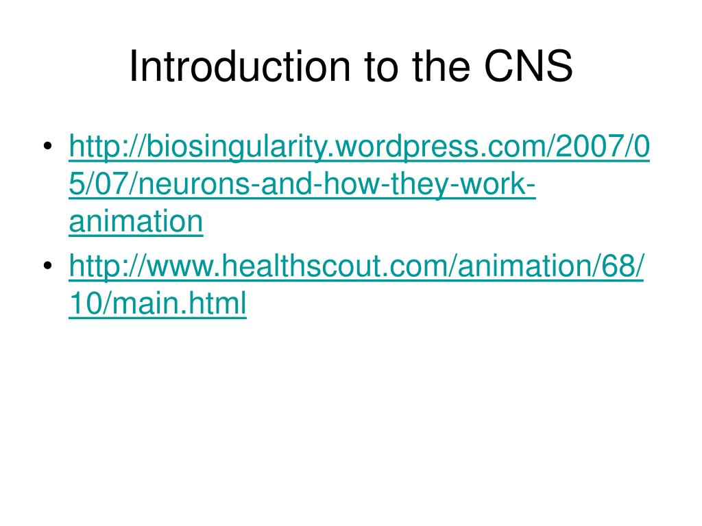 introduction to the cns l.