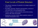 four levels of protein structure
